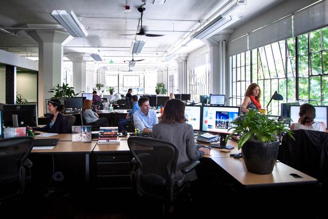 Paladino_office