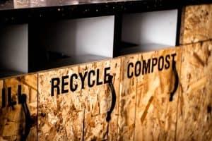 sustainability-consultant