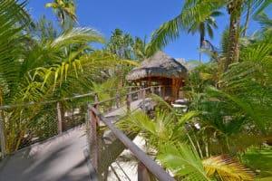 brando-resort-sustainability-net-zero